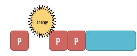 cellularenergyATPEnergy
