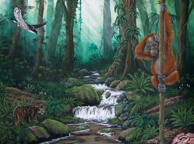 ecologyrainforest
