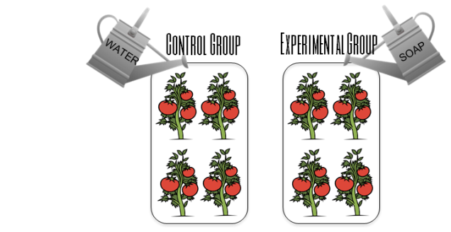 experimentalcontrolgroup