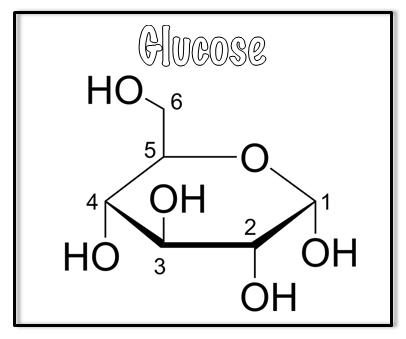 glucose (1).png