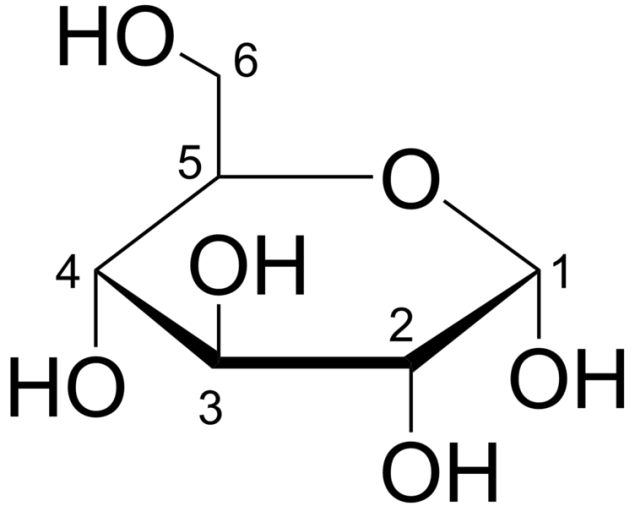 glucose2.png
