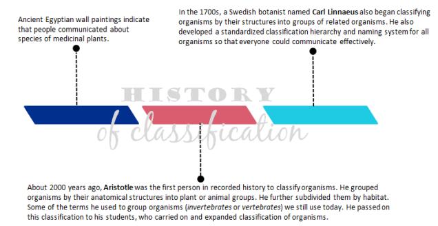 HistoryOfClassification