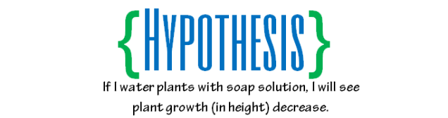 hypothesis2